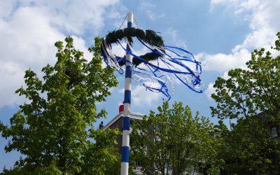 """""""Der Maibaum wird bereits seit  32 Jahren in Rosenhügel aufgebaut"""""""